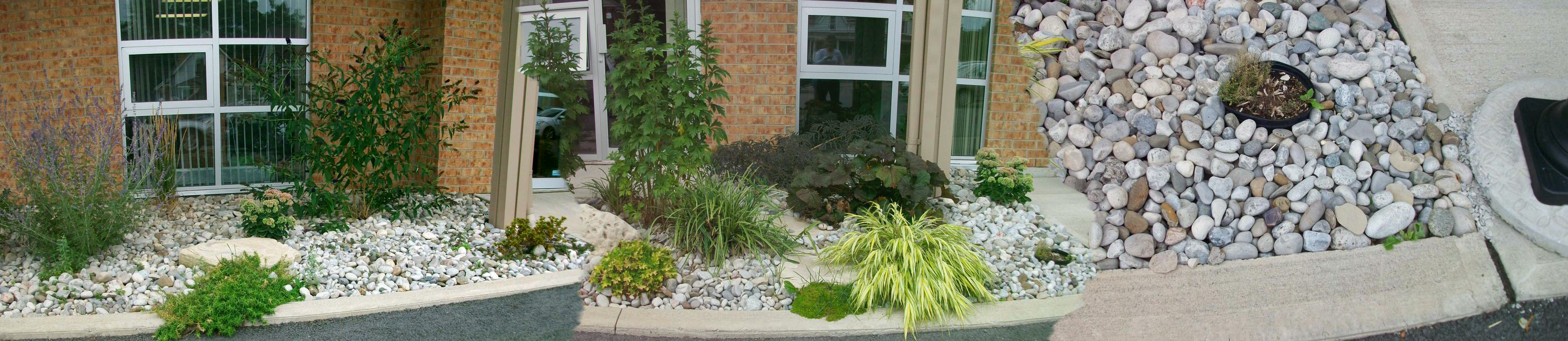 Landscaping featuring some light coloured rocks, shrubs and green plants